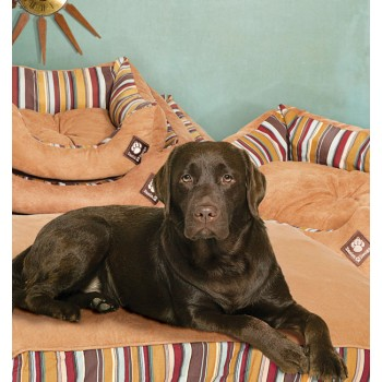 Box Duvet Dog Bed - Morocco