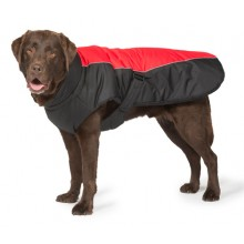 Sports Luxe Dog Coat