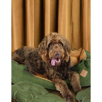 Snuggle Dog Bed - Tweed