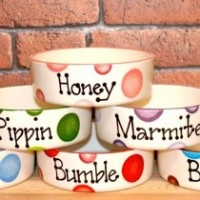 Personalised Ceramic Spotty Dog Bowls