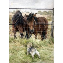 Dog Print Greetings Cards (5 Pack)