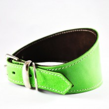 Leather Dog Collars & Leads