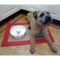Personalised Ceramic Dog Bowl with a Portrait of your Dog