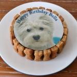 Personalised Dog Birthday Cake