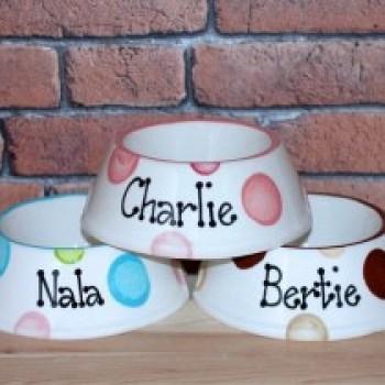Personalised Ceramic Slanted Dotty Dog Bowls