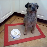 Personalised Slanted Dog Bowl with a Portrait of your Dog